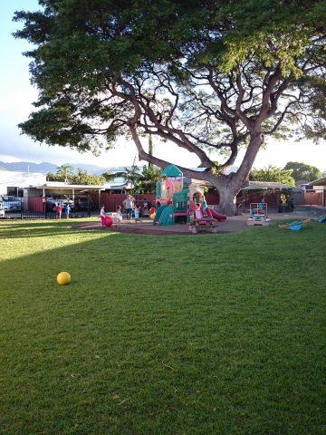 4歳から英語始めました!ハワイ留学エージェントの選び方